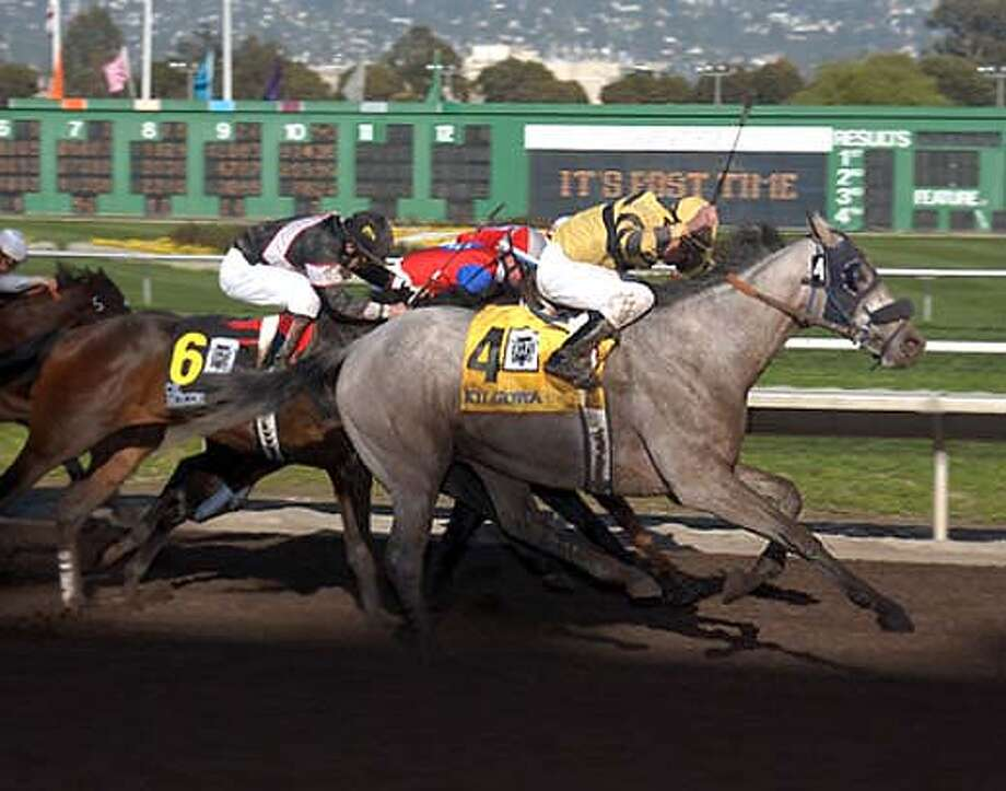kilgowan won the el camino real derby, chance rollins rode, lonnie arterburn trained, and the lovely jamie arterburn was the asst tr.