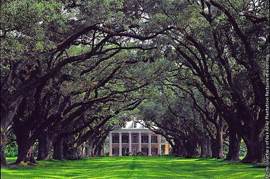 Civil War-era plantations line Great River Road in Louisiana, including Oak Alley, where you can sightsee or spend the night. Photo courtesy of Oak Alley Plantation Restaurant and Inn