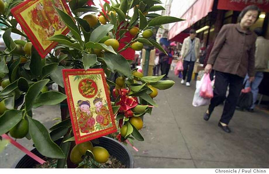 chinese21036_pc.jpg Sidewalk flower vendors are selling kumquat trees laced with lai see red wraps. Oakland's Chinatown gets ready for Chinese New Year on 1/15/04. PAUL CHINN / The Chronicle Photo: PAUL CHINN