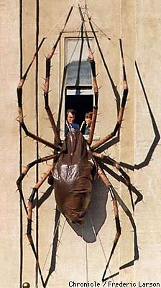 "SPIDERS/19AUG97/MN/FRL: ""Honey should we close the window?"" The California Academy of Art is promoting their new ""Spiders"" exhibit putting a huge model spiders on the SF Ferry Building at the foot of Market street. Chronicle photo by Frederic Larson."