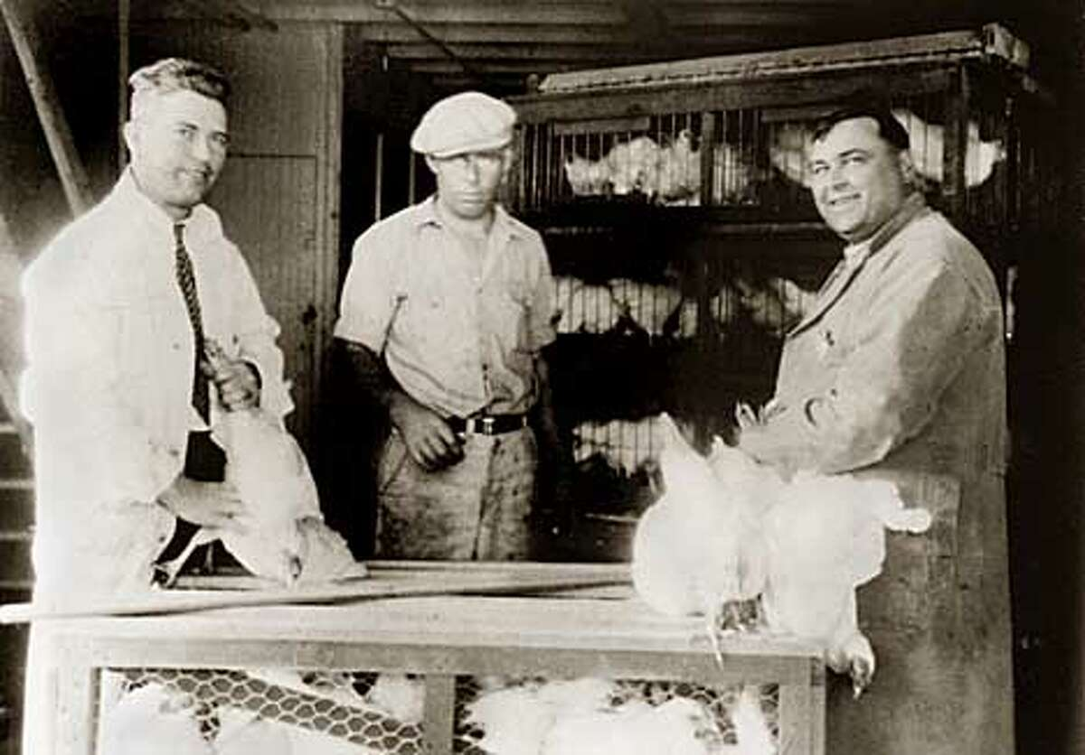 From left, Angelino, Giulio and Alberto Magnani with chicken crates. Magnani Poultry, 5th and Franklin Streets, Oakland. Circa 1935. Photo courtsey of Magnani Poulty.