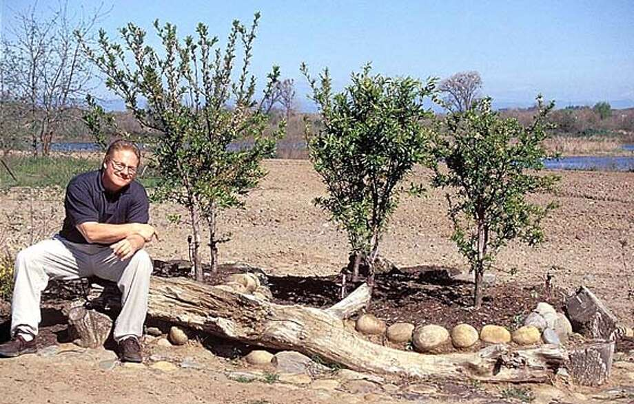 Ed Laivo and a six-in-one-hole pluot planting.