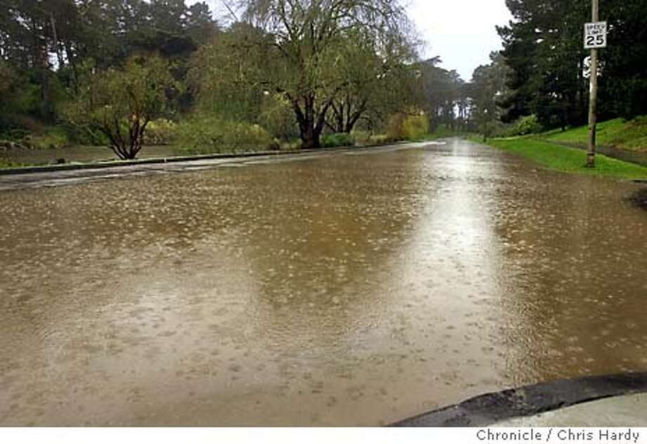 flooding in Golden Gate park after the morning doesn't seem to bother the ducks, but has closed Kennedy drive between 25th ave and Sunset  CHRIS HARDY/The Chronicle Photo: CHRIS HARDY