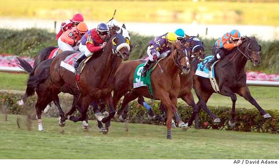 Proud Man, left, with Rene Douglas aboard, sprints toward the finish line to win the Franks Farm Turf on Saturday, the fourth leg of the Sunshine Millions at Gulfstream Park in Hallandale Beach, Fla. At center is second-place finisher Hear No Evil, ridden by Julio Garcia, and Bourbon County, with Luis Jauregui aboard, is on the inside. (AP Photo/David Adame) Photo: DAVID ADAME