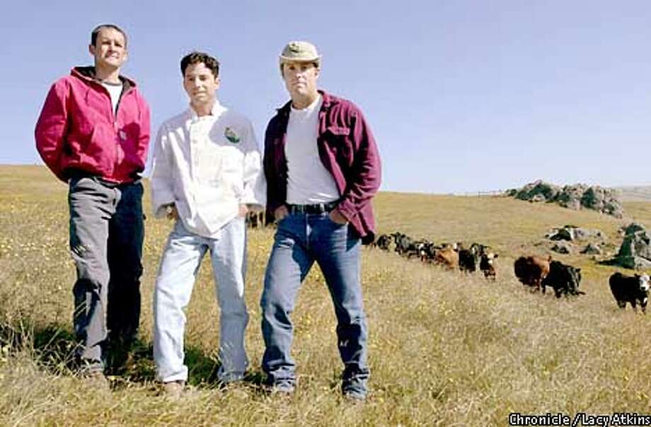 The three founders of Marin Sun Farms out at the ranch in West MArin where their cows eat grass.Left (name to come) center Eric Parks and David Evans.  PHOTO BY LACY ATKINS/CHRONICLE Photo: Lacy Atkins