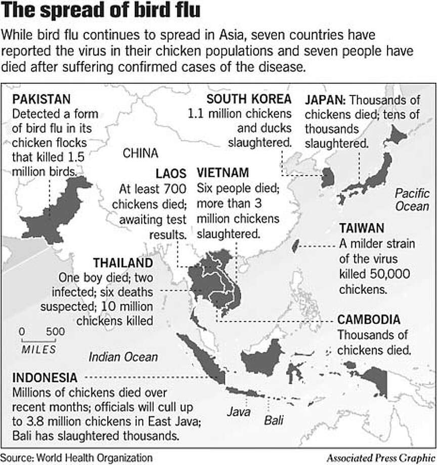 The Spread of Bird Flu. Associated Press Graphic Photo: Joe Shoulak
