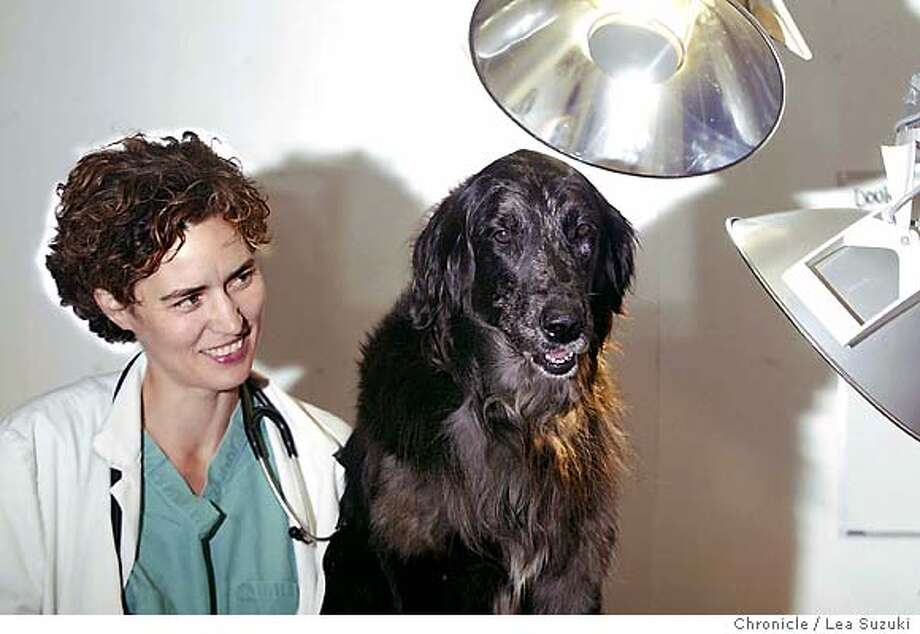 Jennifer Scarlett, veterinarian, specializes in treating large animals for cancer and also travels to exotic places worldwide to spay dogs and cats, and work with the locals with her dog, Hula, on 12/17/03 in San Francisco, CA.  Photo by Lea Suzuki / The San Francisco Chronicle Photo: Lea Suzuki