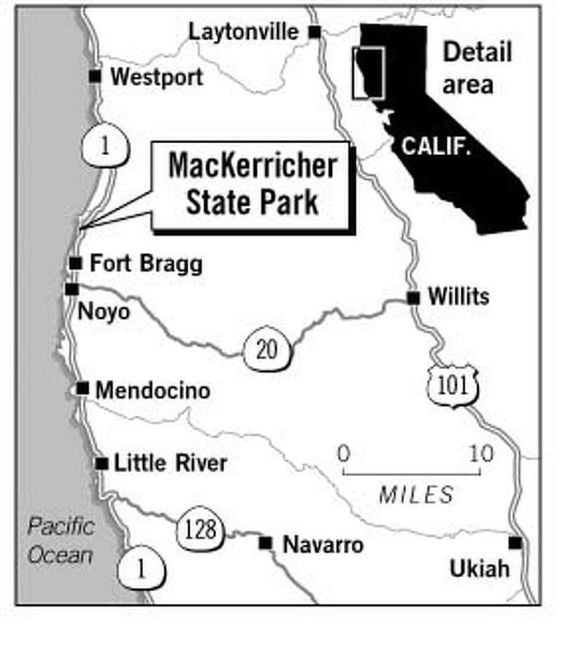 MacKerricher State Park. Chronicle Graphic