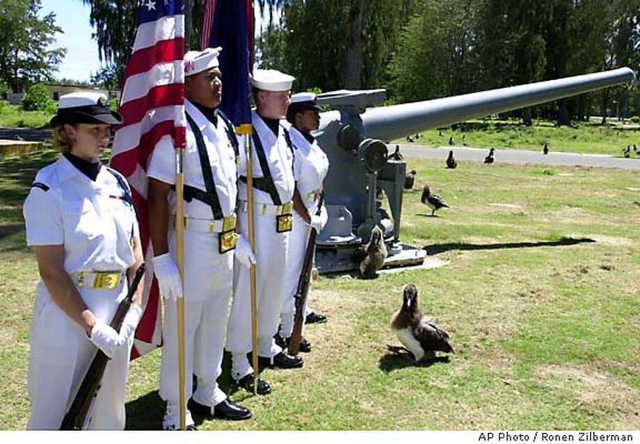 TRAVEL MIDWAY -- A young albatross, bottom right, stands in front of a military honor guard during ceremonies commemorating the 60th anniversary of the Battle of Midway on Midway Atoll, June 5, 2002. To World War II veterans, the remote islands will be known as the site where the fortunes of war in the Pacific shifted in favor of the United States. But ever since the Navy closed its air base at Midway in 1993, more attention has been paid to wildlife that inhabited the atoll long before the military. (AP Photo/Ronen Zilberman) Photo: RONEN ZILBERMAN