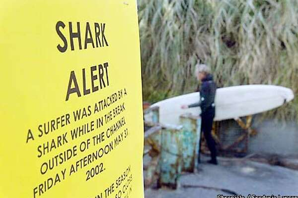 SHARK-C-05MAY02-MT-FRL: Despite warning of a shark attack surfers in Bolinas head for the surf. Chronicle photo by Frederic Larson