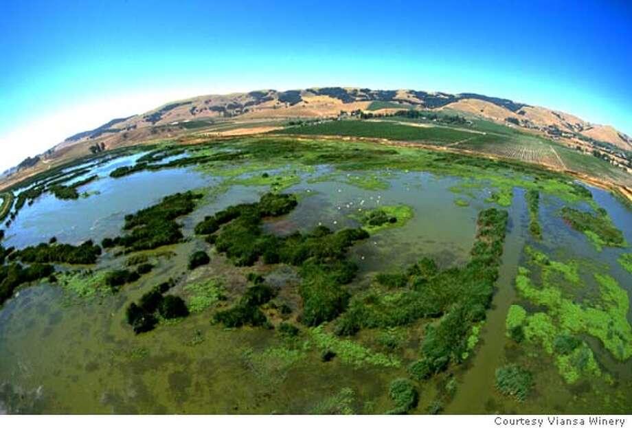 / for: Friday slug: NBVIANSA09; The wetlands owned by Viansa Winery Courtesy Viansa Winery / HO Photo: Courtesy Viansa Winery