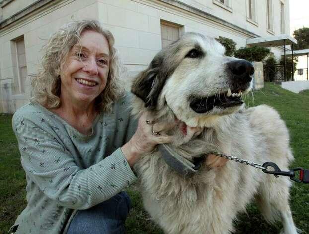 Rowdy Kate Cordts 'cão tem feito bem depois de receber um tratamento de câncer experimental.  Foto: JUANITO GARZA / jugarza@express-news.net