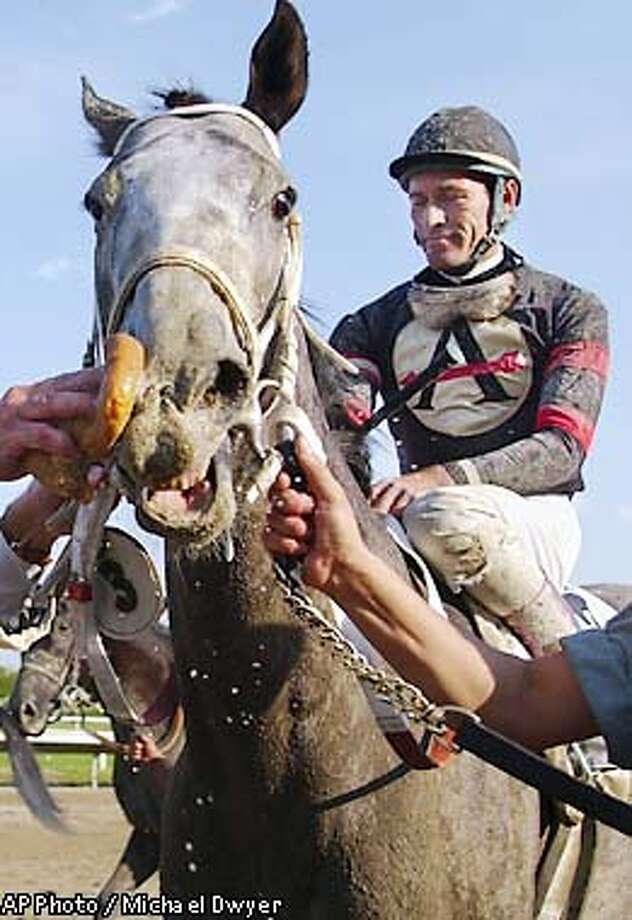 Jockey Gary Stevens waits as Macho Uno cools down after winning the 63rd running of the Massachusetts Handicap at Suffolk Downs in Boston, Saturday, June 1, 2002. (AP Photo/Michael Dwyer) Photo: MICHAEL DWYER