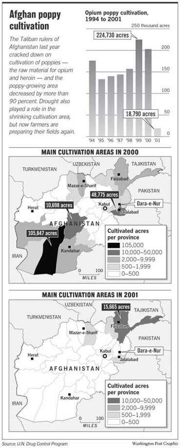 Afghan Poppy Cultivation. Washington Post Graphic