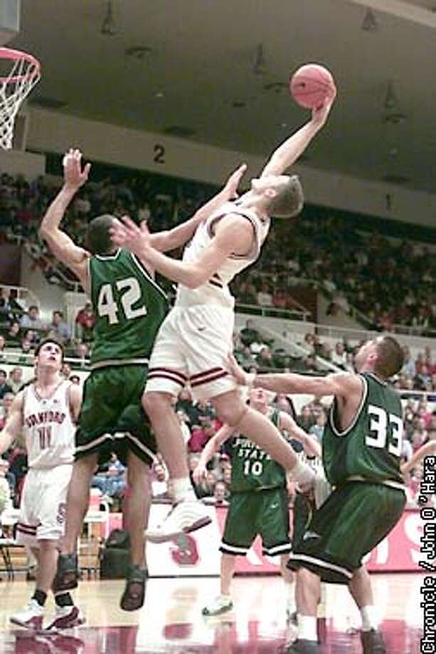 Maples Pavillion, Stanford Univ. Palo Alto CA  Stanford V/S Portland State Vikings  Stanford's #2 Curtis Borchardt goes way over Portland's Seamus Boxley to up the score to 25-16 Stanford. Borchardt had 15 points in the first half  Photo/John O'Hara Photo: John KO'Hara