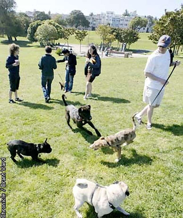 Most dogs in Dolores Park were unleashed Thursday morning...Todd Quackenbush, right, left his pup Naomi on a leash because of her age. A new ruling Wednesday night may force all dog owners to leash their pets. By Brant Ward/Chronicle Photo: BRANT WARD