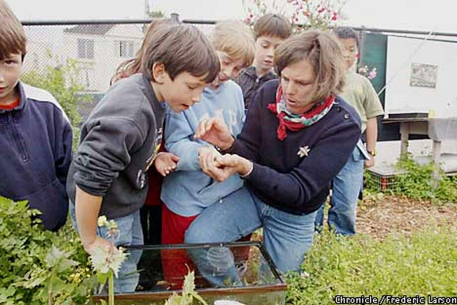Arden-Bucklin Sporer works with Catherine Schuknecht, 9, (left) and Acshi Haggenmiller, 8, in the garden at Alice Fong Yu Alternative School in San Francisco. The garden Bucklin-Sporer started as a concerned parent has grown to 19 terraced beds and an active center for student learning. Chronicle photo by Frederic Larson