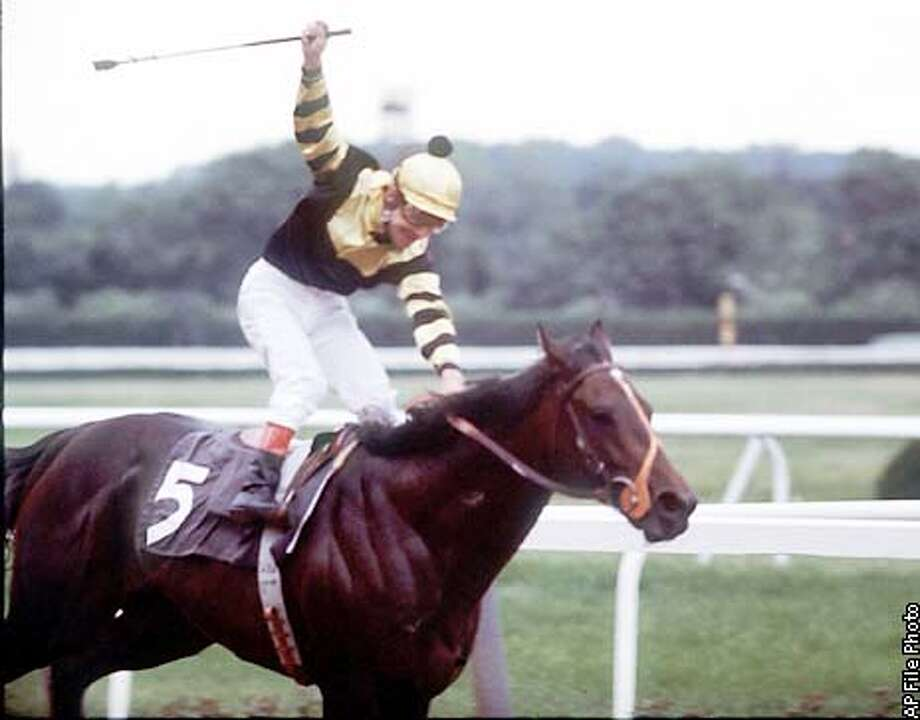 ** FILE ** Jockey Jean Cruget stands up in his saddle and celebrates after guiding Seattle Slew to victory June 11, 1977 in the Belmont Stakes at Belmont Park in Elmont, N. Y. The win gave Slew horse racing's Triple Crown. Slew, who went on to become one of thoroughbred racing's greatest sires, died Tuesday, May 7 2002. The champion race horse, the last of the living Triple Crown winners, died in its stall while sleeping, a Hill 'n' Dale Farm spokeswoman said. (AP Photo/File)