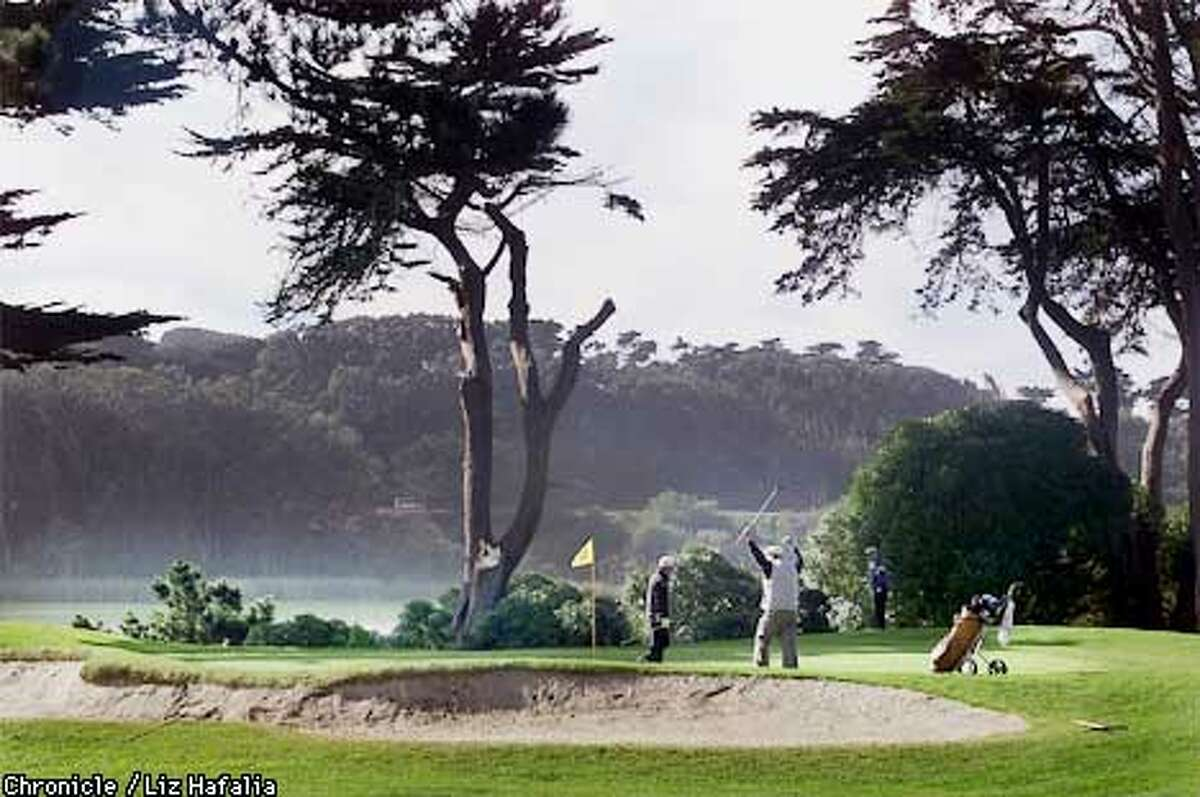 The city is considering four proposals to upgrade Harding Park. BY LIZ HAFALIA/THE CHRONICLE