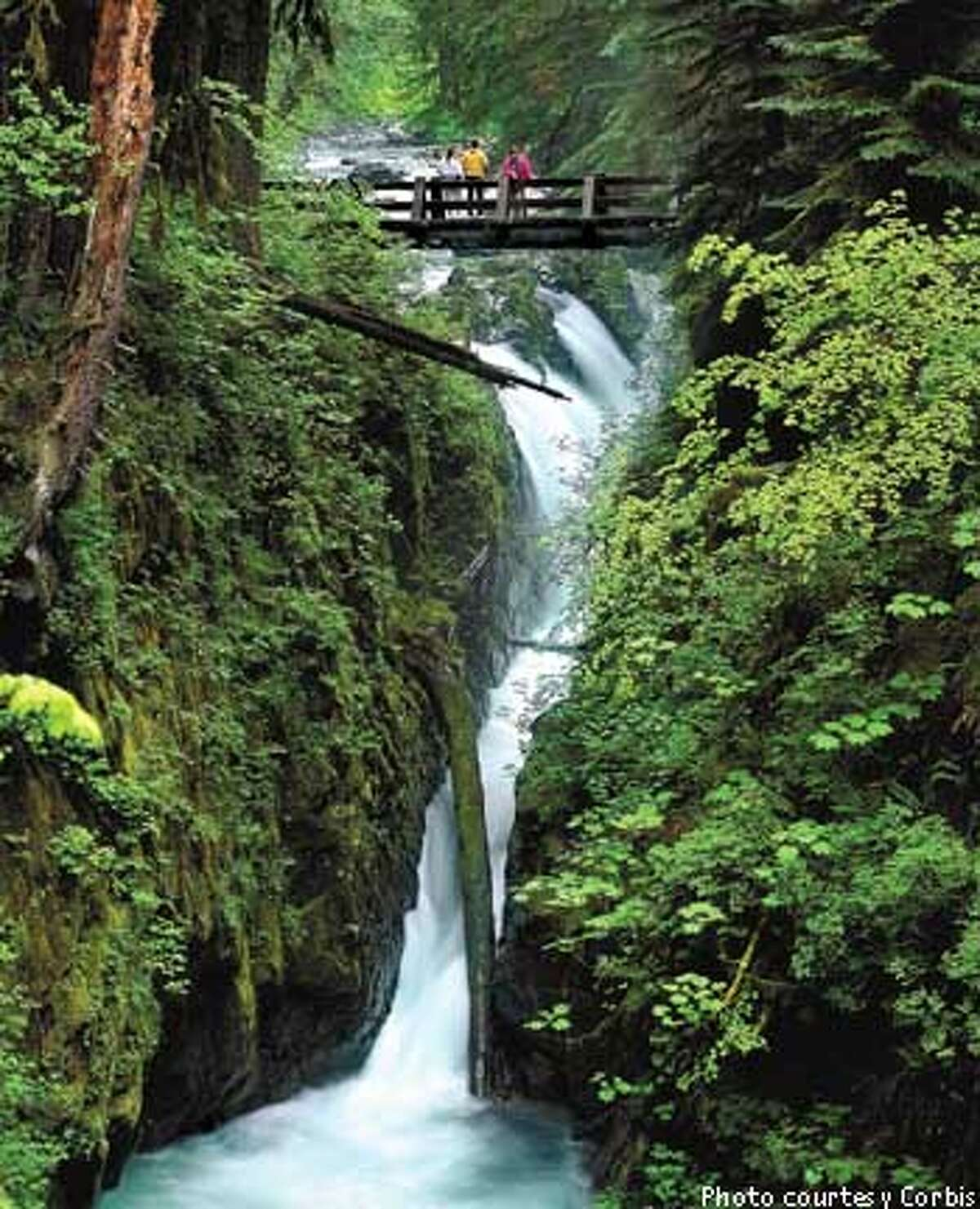 Surrounded by hemlock and Douglas firs, the Sol Duc Falls plummet into a gorge crossed by one of the many trails through the park's old-growth forests. Photo courtesy of Corbis