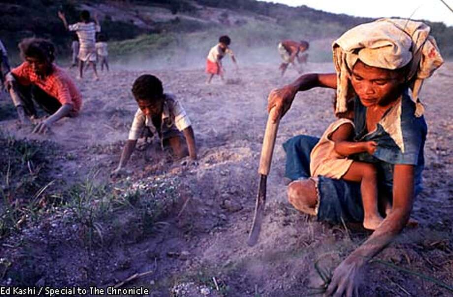 Aeta woman and children remove grass and weeds from a field that they are trying to reclaim for planting. All of the lands here are filled with volcanic ash, which accounts for the dusty environment, but makes everything grow well. They are planting yam.