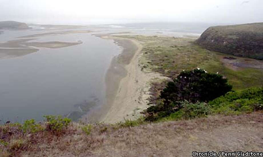 Drake's Estero in Pt Reyes Nat'l Seashore.The tiny cove where Sir Francis Drake is believed to have repaired his ship 422 years ago has reappeared, after vanishing for nearly half a century. CHRONICLE PHOTO BY PENNI GLADSTONE Photo: Penni Gladstone
