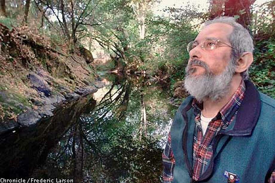 : Todd Steiner, director of the Sea Turtle Restoration Project. He and his staff of six work in offices in a former chicken coup next to his home in the west Marin town of Forest Knolls. He's also director of SPAWN, a grass-roots organization geared toward restoration of coho salmon on Marin creeks. Chronicle photo by Frederic Larson Photo: FREDERIC LARSON
