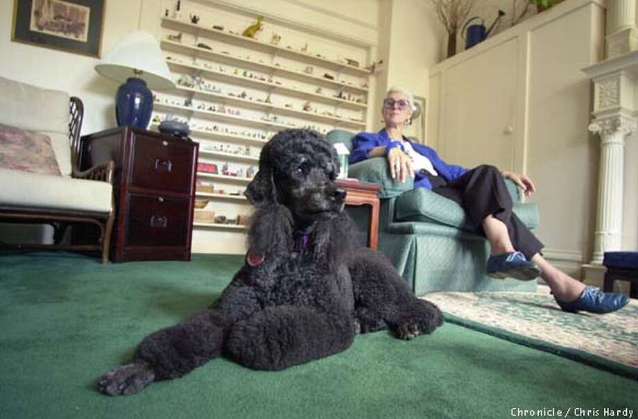 PSYCHOTHERAPIST PATTI MCWILLIAMS AND HER DOG GARBO -----CHRONICLE PHOTO BY CHRIS HARDY Photo: Chris Hardy