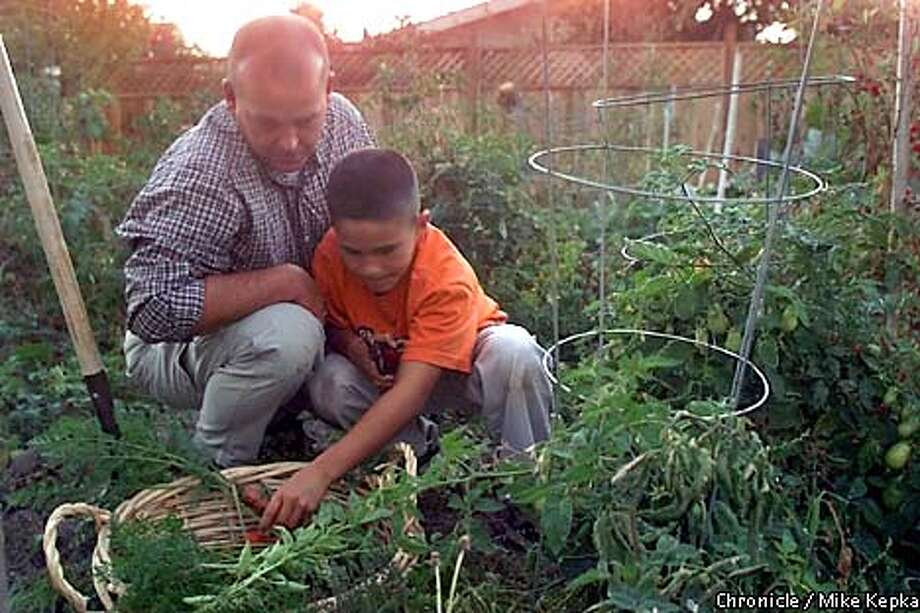 Keith Harper pics vegetables for the evening meal with his son Dylan Harper, 10, at his home in Fremont. Harper who is a 20 year veteran of the Redwood City police force is also in the Airforce reserves and maybe called to duty at any time. BY MIKE KEPKA/THE CHRONICLE Photo: MIKE KEPKA
