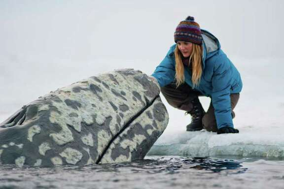 """In this image released by Universal Pictures, Drew Barrymore is shown in a scene from """"Big Miracle,"""" a film about the rescue of a family of gray whales trapped by rapidly forming ice in the Arctic Circle. The film, which stars Barrymore and Ted Danson opens Feb. 3."""