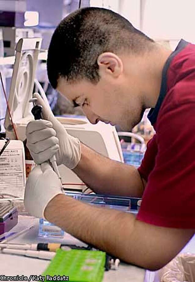 Photo by Katy Raddatz--The Chronicle  High school internship porgram at Stanford's Center for Clinical Sciences Research, Immunology Center. SHOWN: Faraaz Chekeni is man in red shirt loading a gel with DNA restriction digest samples. Linda Berlin is the reporter. Photo: KATY RADDATZ