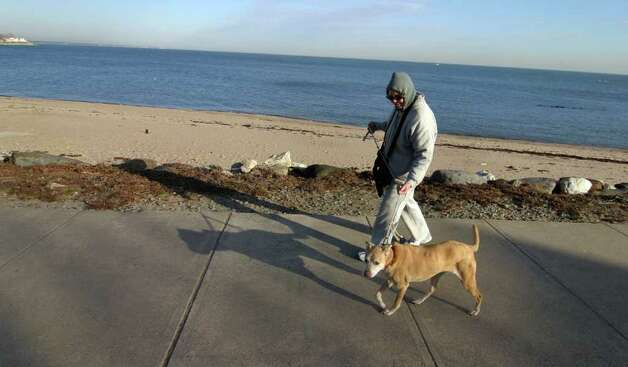 Janet Welch, of West Haven, takes her dog Leila' for a stroll along Beach Avenue in Milford, Conn. on Tuesday January 31, 2012. Photo: Christian Abraham / Connecticut Post