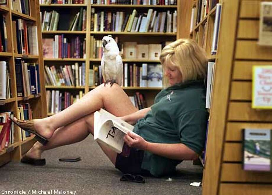 """Gail Grant of Blackhawk (Contra Costa County) does a little reading at Borders Books in San Ramon with her pet cockatoo """"Photon"""" perched on her knee. The 6 year old bird goes everywhere with Grant including tagging along with her biking, swimming and rollerblading.  CHRONICLE PHOTO BY MICHAEL MALONEY Photo: MICHAEL MALONEY"""