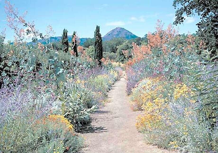 Color marks this path at Fetzer Vineyards' Valley Oaks Garden. Photo courtesy of Fetzer Vineyards