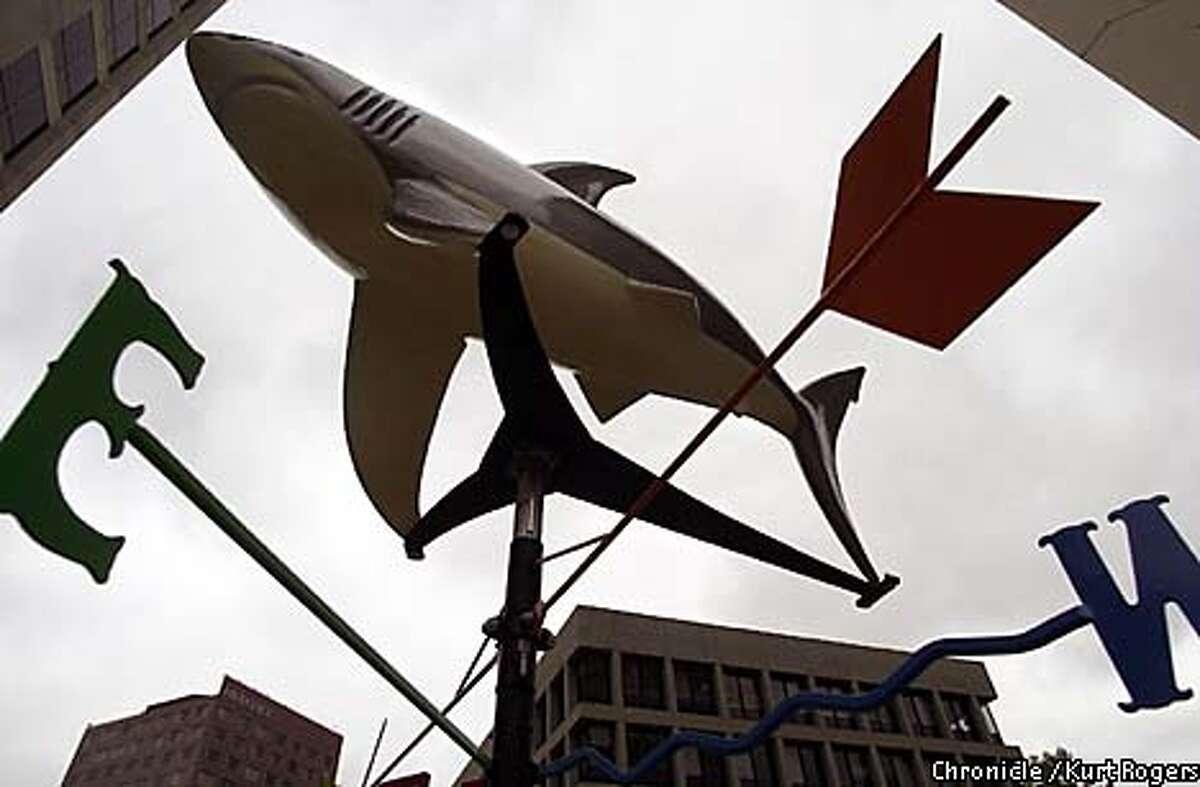 N.E.W.S. Shark Shark art in San Jose .Photo By Kurt Rogers