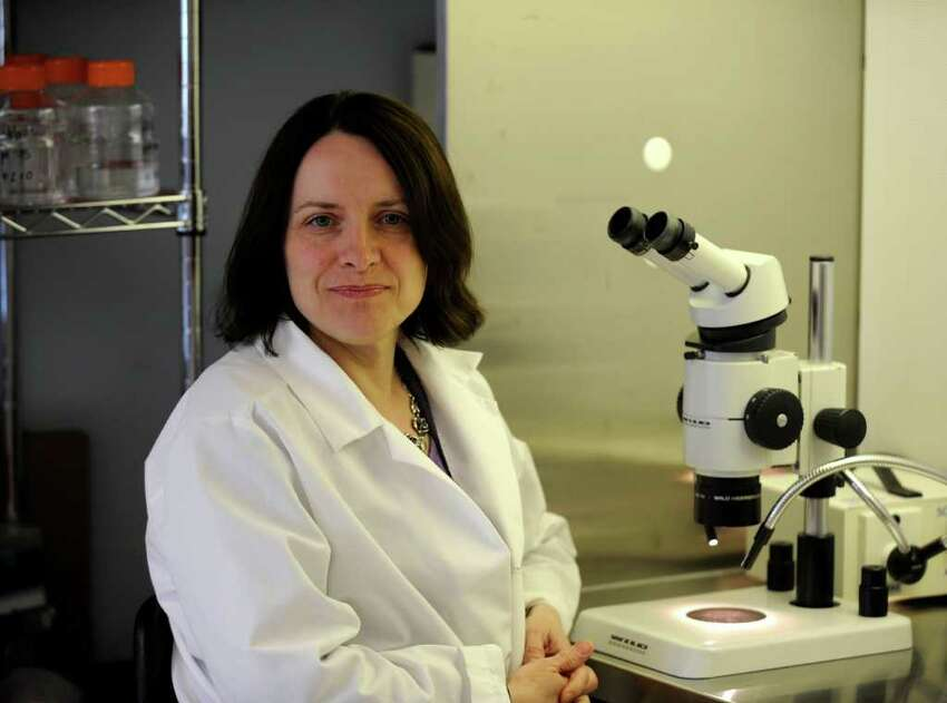 Dr. Sally Temple in her research lab in Rensselaer, New York April 15, 2010. (Skip Dickstein/Times Union)