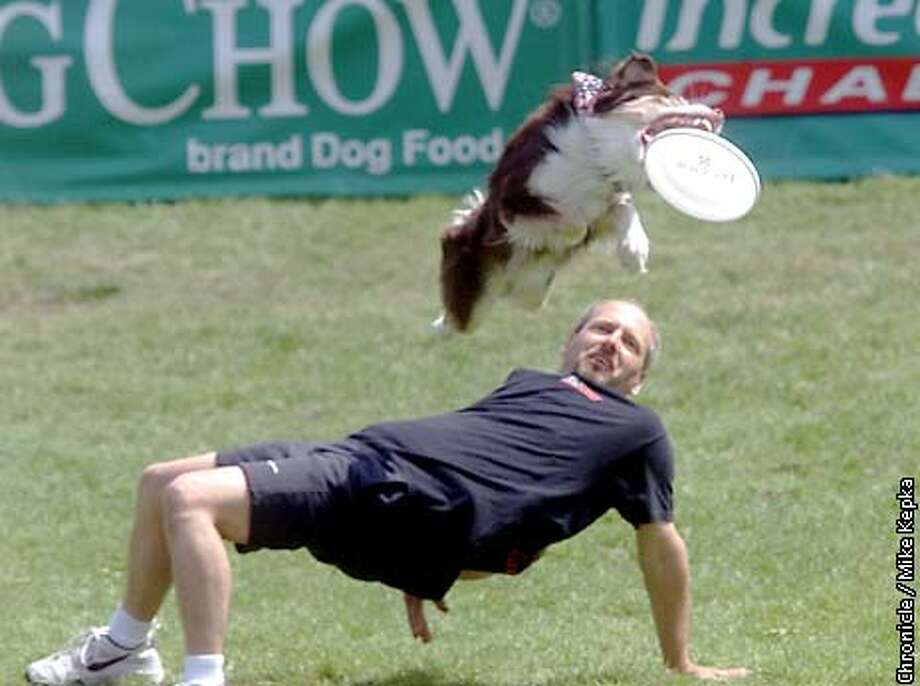 Chris Gardener and his dog Sky Cody of Orange, CA were one of two competitors who qualified for the second round of Incredible Freestyle Flying Disc competition in the Purina Dog Chow Incredible Dog Challenge at Golden Gate Park. BY MIKE KEPKA/THE CHRONICLE Photo: MIKE KEPKA