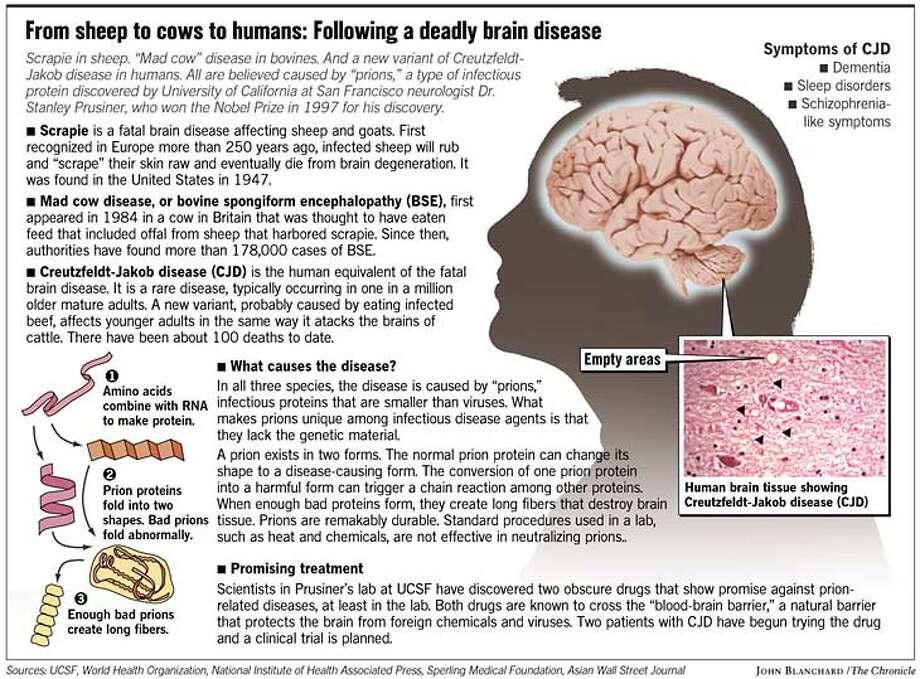 ten genetic diseases essay