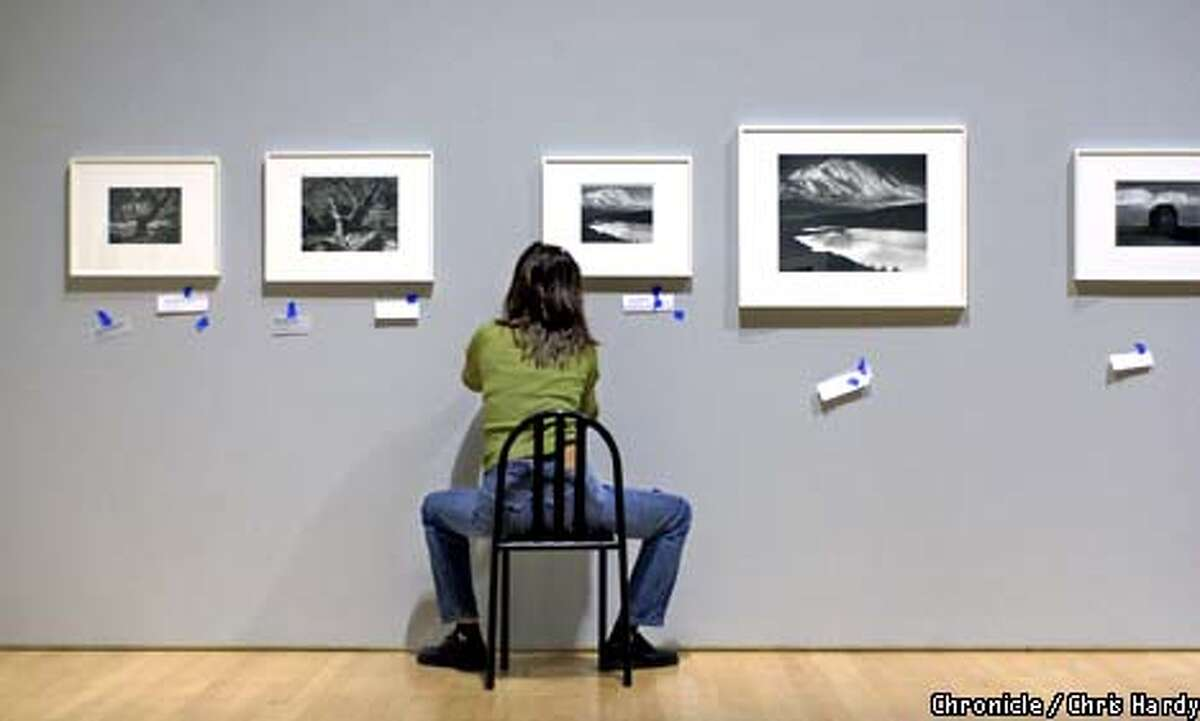 ANSEL ADAMS EXHIBIT AT SFMOMA INSTALLATION TECH KELLY CARLISLE PUTS CAPTIONS ON PICTURES -----CHRONICLE PHOTO BY CHRIS HARDY