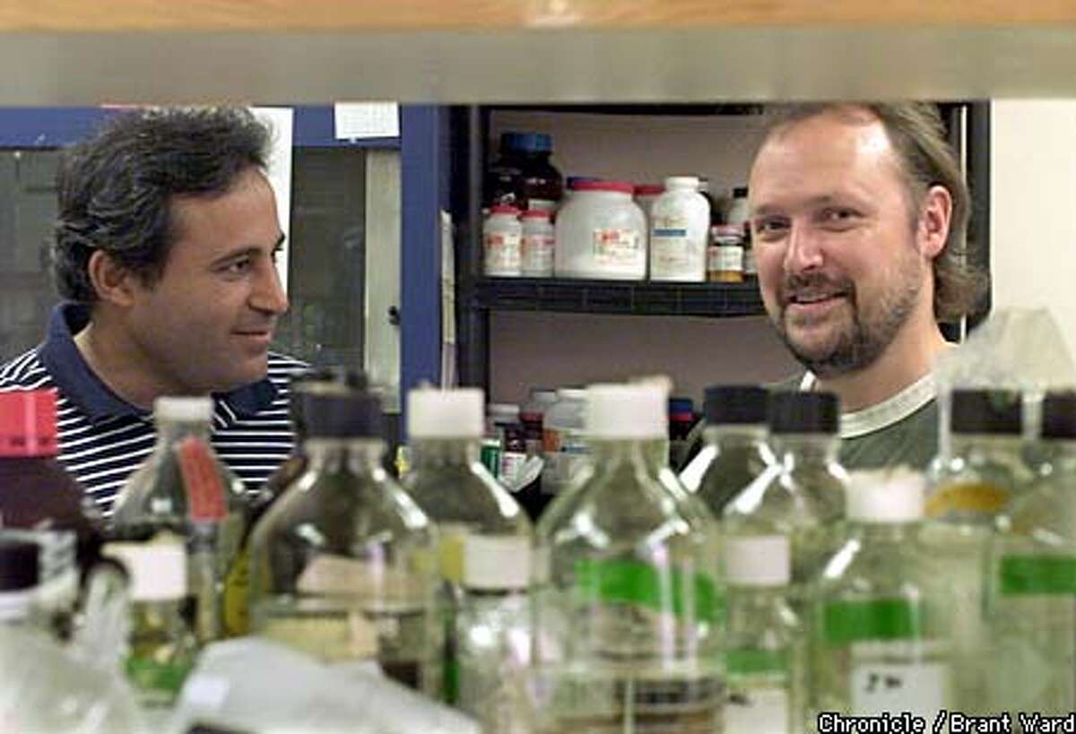 Michael J. Campbell Ph.D., right, and Isaac Cohen L.Ac., O.M.D. are working on properties of traditional Chinese herbs that might work against breast cancer. They are shown in their cluttered labratory at the Brunn Institute in San Francisco. By Brant Ward/Chronicle