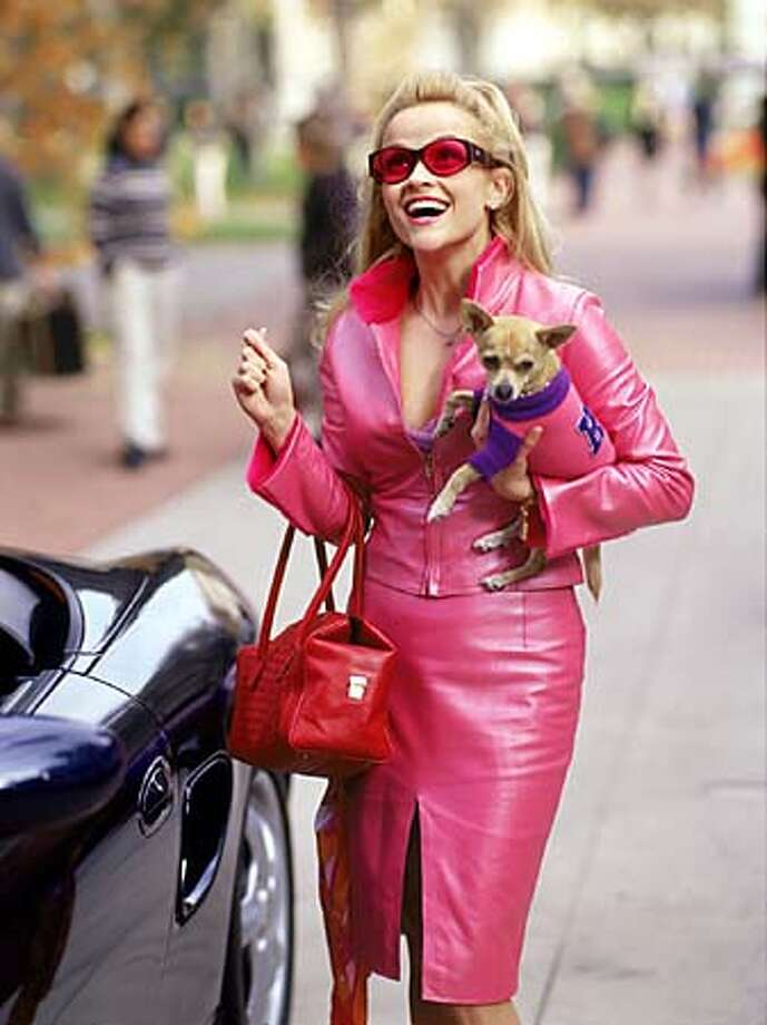 "Reese Witherspoon stars as a sorority type who winds up at Harvard Law School in ""Legally Blonde."" Photo courtesy of Tracy Bennett"