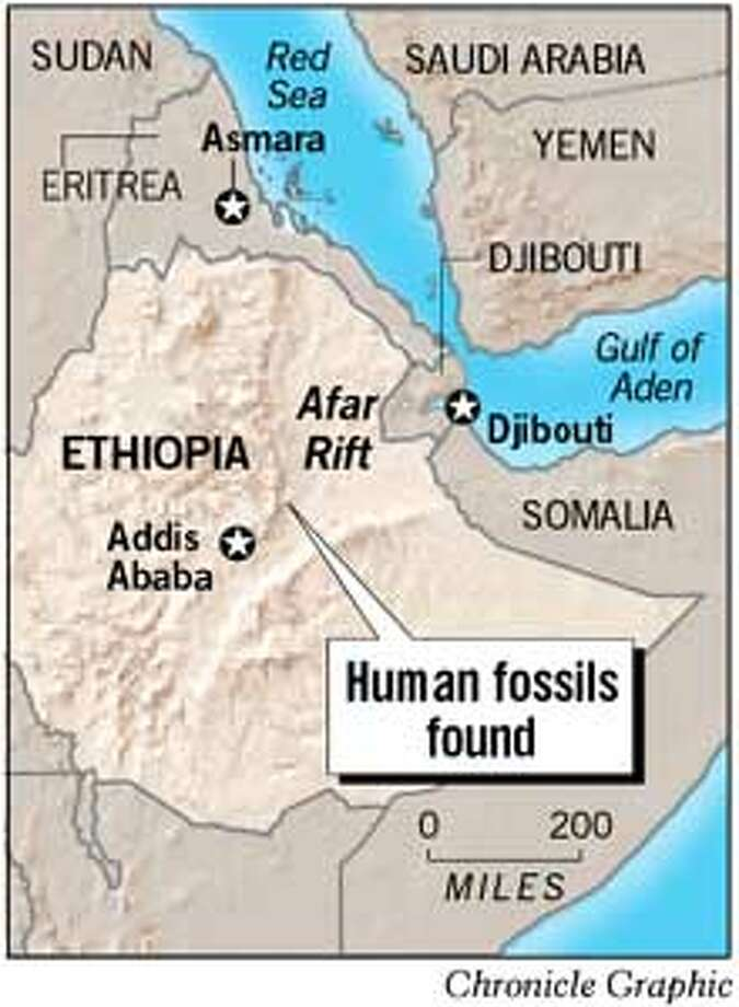 Human Fossils Found. Chronicle Graphic