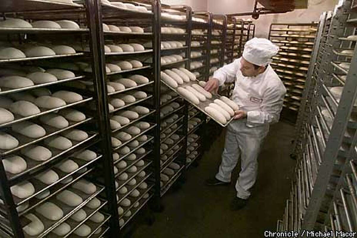 The 150th Anniversary of Sourdough French Bread in San Francisco. Boudin Bakery has been baking bread for the past 150 years. Their bakery at 10th Ave.and Geary St. bakes 20,00 pounds of dough a day. Master Baker Fernando Padilla inspects racks of dough in the fementation room. by Michael Macor/The Chronicle