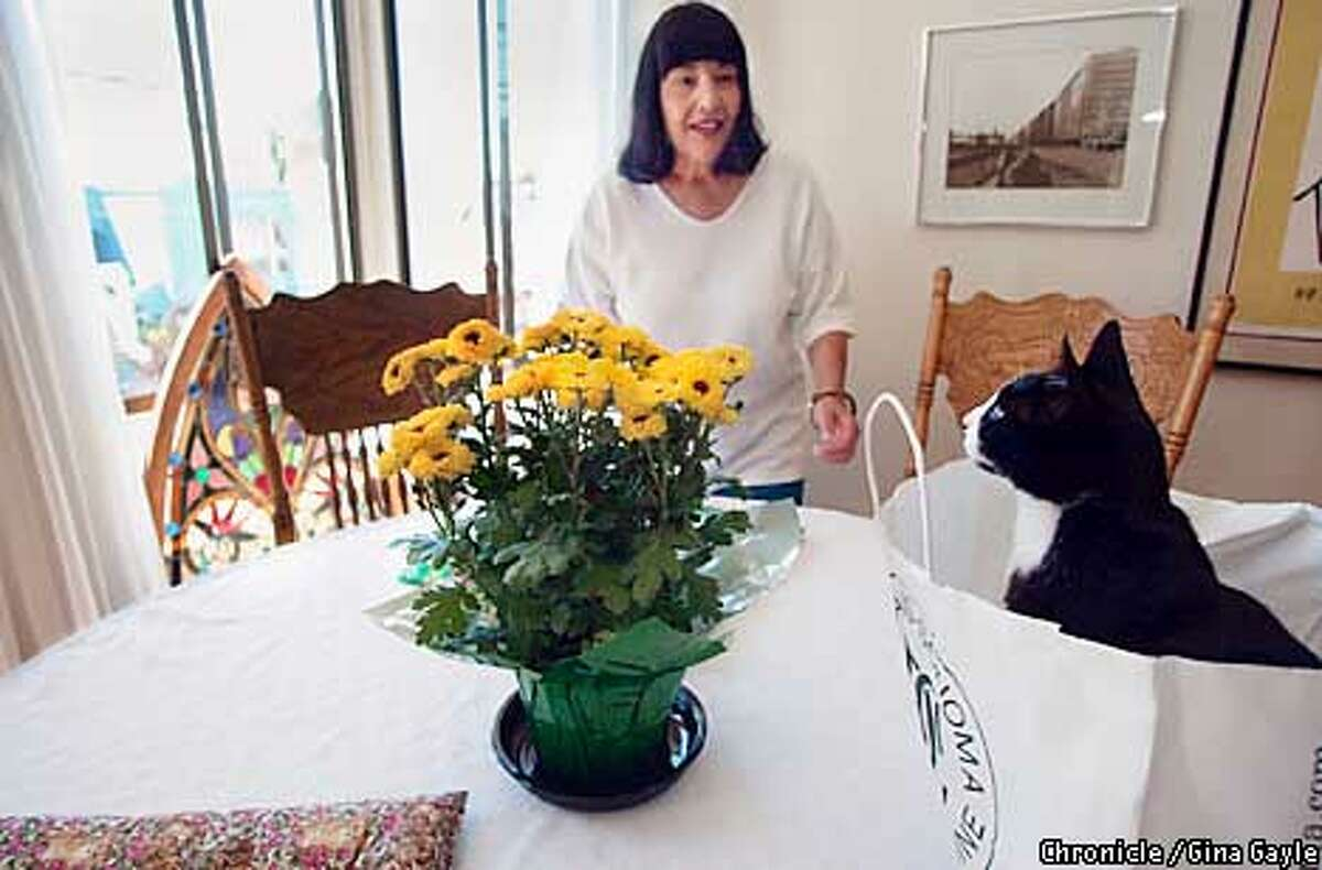 Eclipse sits on the table and looks out of the window after a quick walk around the house in the shopping bag. Kitty B&B owner Marti Sousanis is trying to get Eclipse out of the bag for snack time. Photo by Gina Gayle/The SF Chronicle.