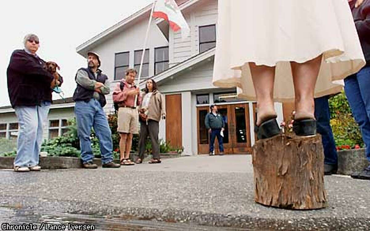 MATTOLE 01-01JUN01-MN-LI Sandy Tillus a Petrolia Calif stands on a redwood stump as she delivers her message to employees of Pacific Lumber inside the company office located in Scotia Calif Friday. land owners adjacent to the Mattole River marched on the company offices to confront the company officers, only to be denied access. Erosion up stream do to clear cutting over the years as deposited tons of gravel into the river, Changing it's couse and trapping much of the water under gravel. By LANCE IVERSEN/SAN FRANCISCO CHRONICLE