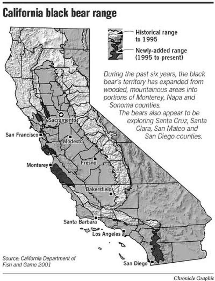 California Black Bear Range. Chronicle Graphic