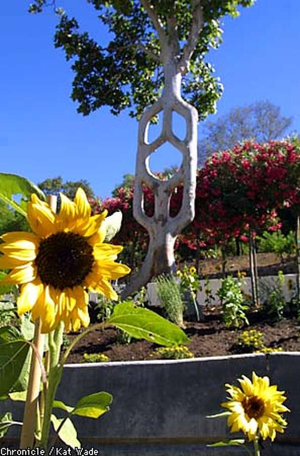 New theme park blossoms in gilroy rides games and weird for Gilroy garden trees