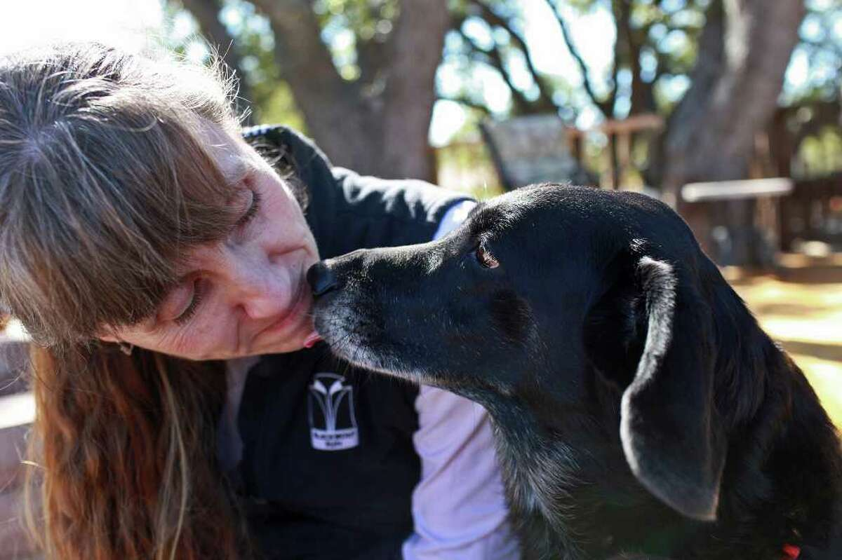 Darla gives a kiss to dog foster mom Brigitte Monroe, who says the basset mix has regained a perky personality.