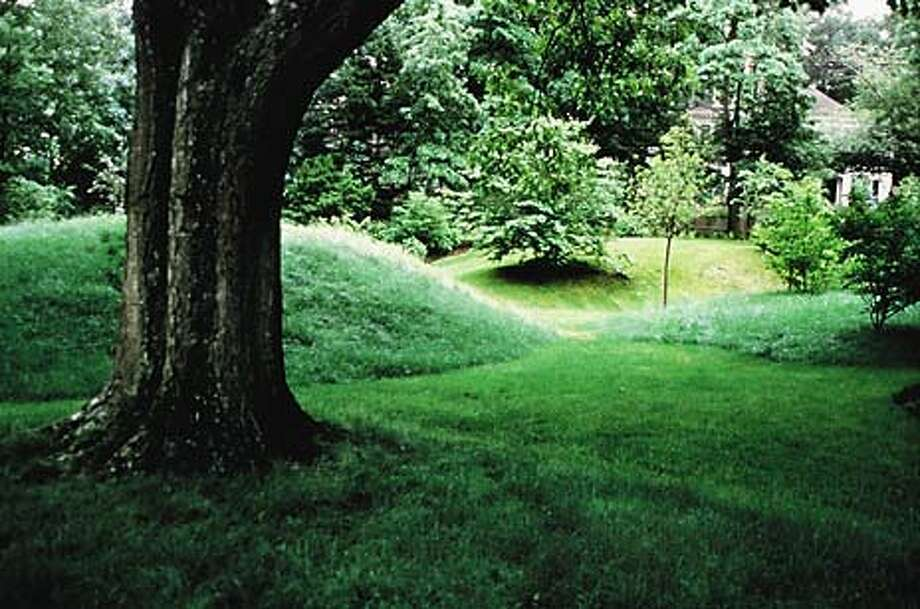 TEXTURE: Varying the mowing height to fit the landscape adds natural beauty to an ordinary lawn.