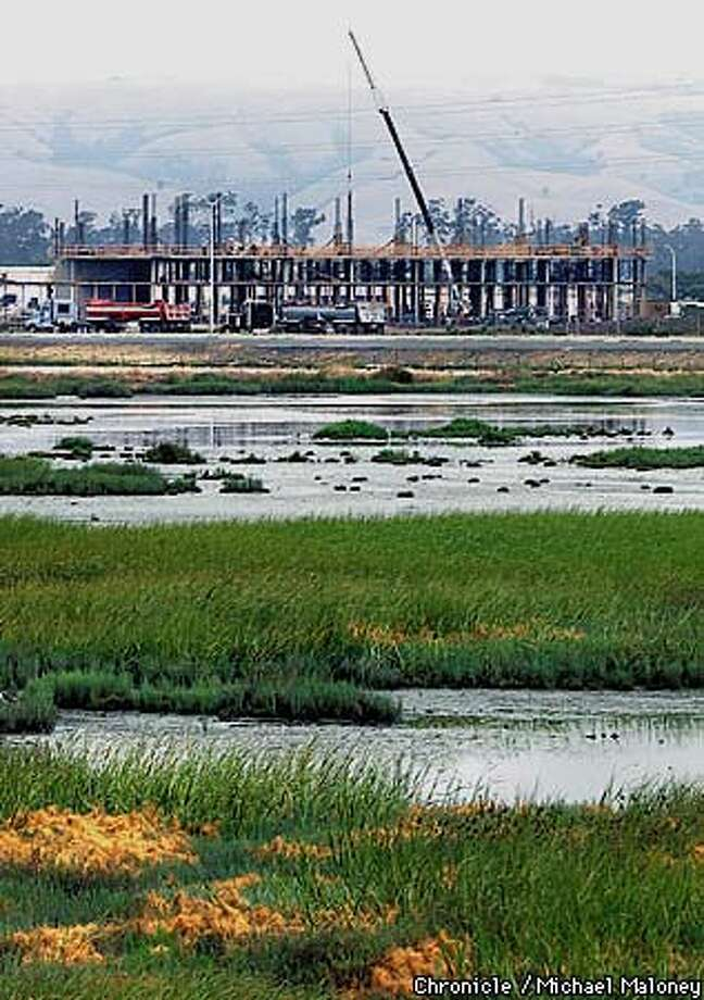 New construction near San Francisco Bay National Wildlife Refugee near Newark has encroached on the wetlands. Experts maintain the expansion of these wetlands is necessary for the restoration of the bay. Chronicle Photo by Michael Maloney